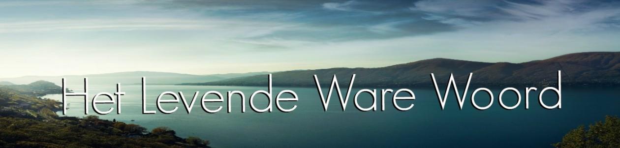 Downloadsite voor Bijbelstudies van Leek en Joure